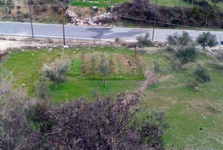 Plot near Anogia Crete for sale