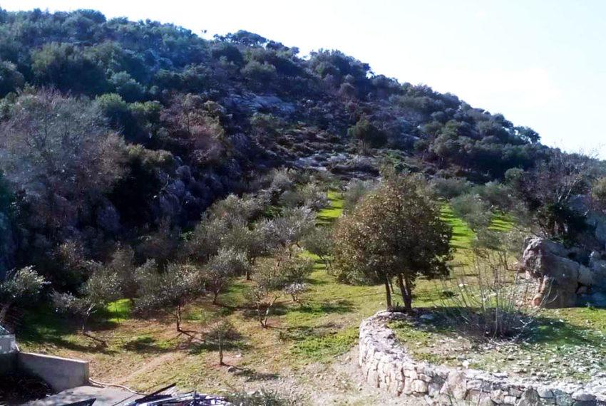 Big plot for sale in crete