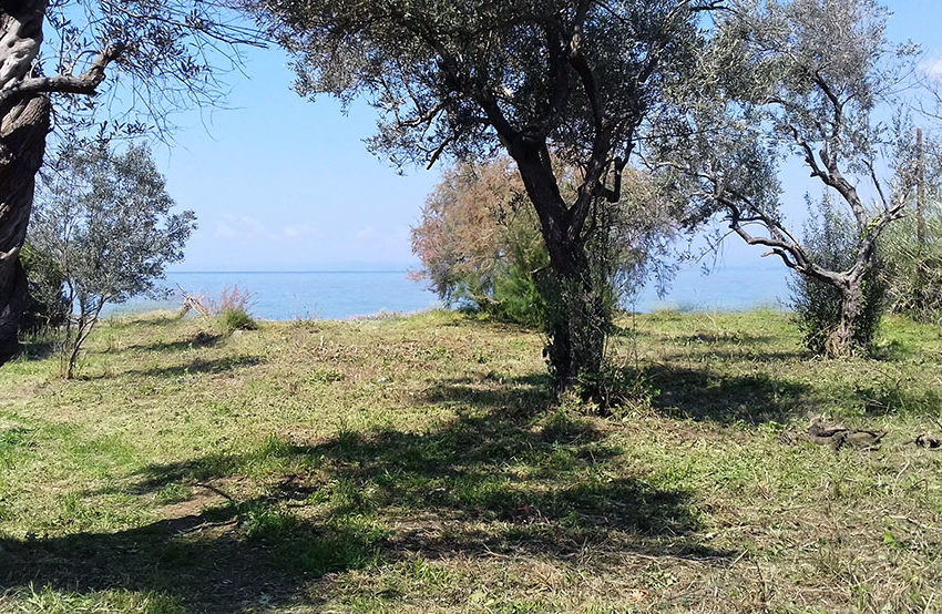 land for sale next gourna beach