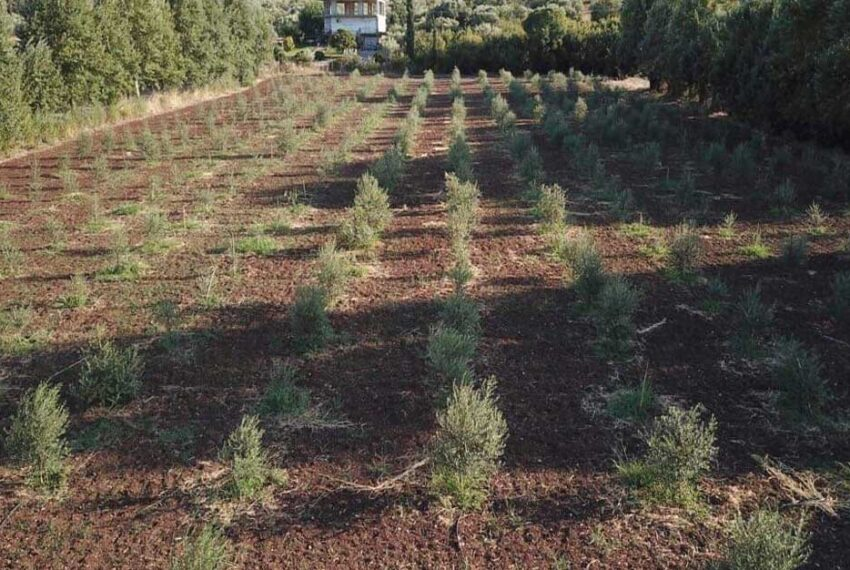 Villa-for-sale-one-hour-from-Athens-airport