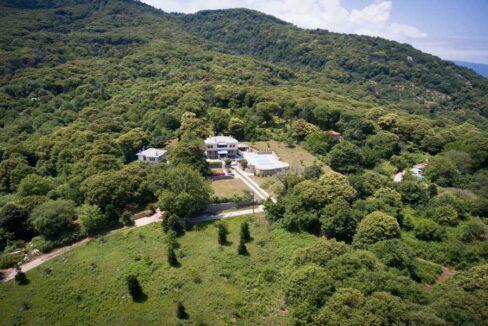 stone-villa-with-tree